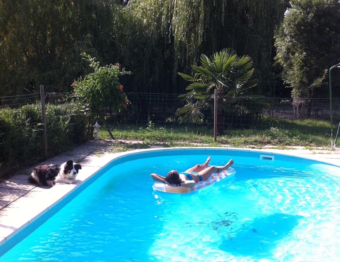Lotus Village Pool - Yoga Meditation Retreat