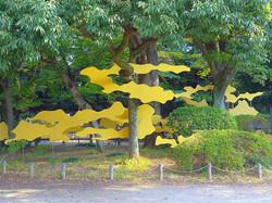 sameshima yumikio arte instalación
