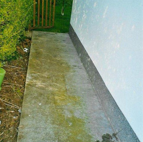 Granitpflaster veralgt