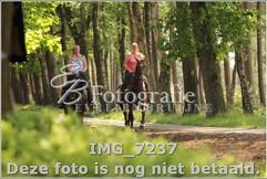 IMG_7237.jpg