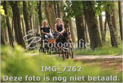 IMG_7262.jpg