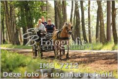 IMG_7212.jpg