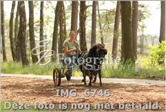 IMG_6746.jpg