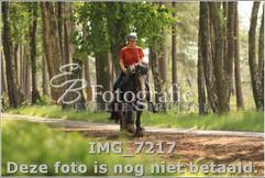 IMG_7217.jpg