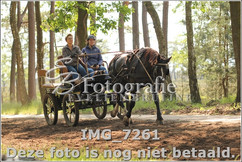 IMG_7261.jpg