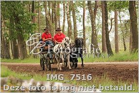 IMG_7516.jpg