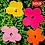 "Thumbnail: LEGO WARHOL FLOWERS  30""X30"""