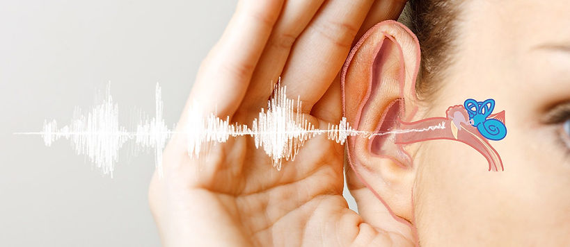 Blogheader_Hearing-Loss-Overview-1560x67