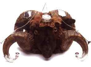 """Ram's Head Snuff Mull"""
