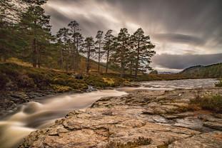 Cairngorms Winter