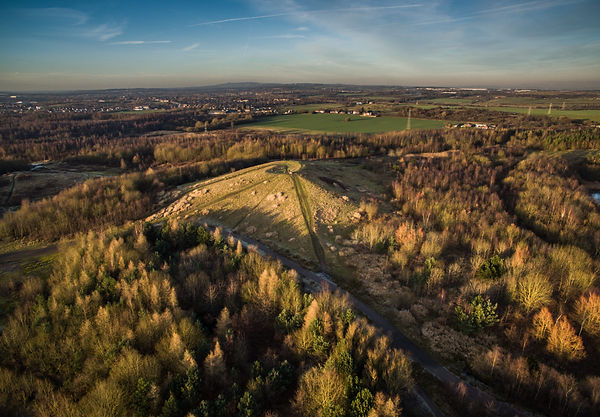 Bold Forest Park St Helens by Steve Samosa Aerial Photography