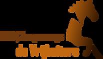 Club van 100 - BSO Zorgmanege de Vrijbui
