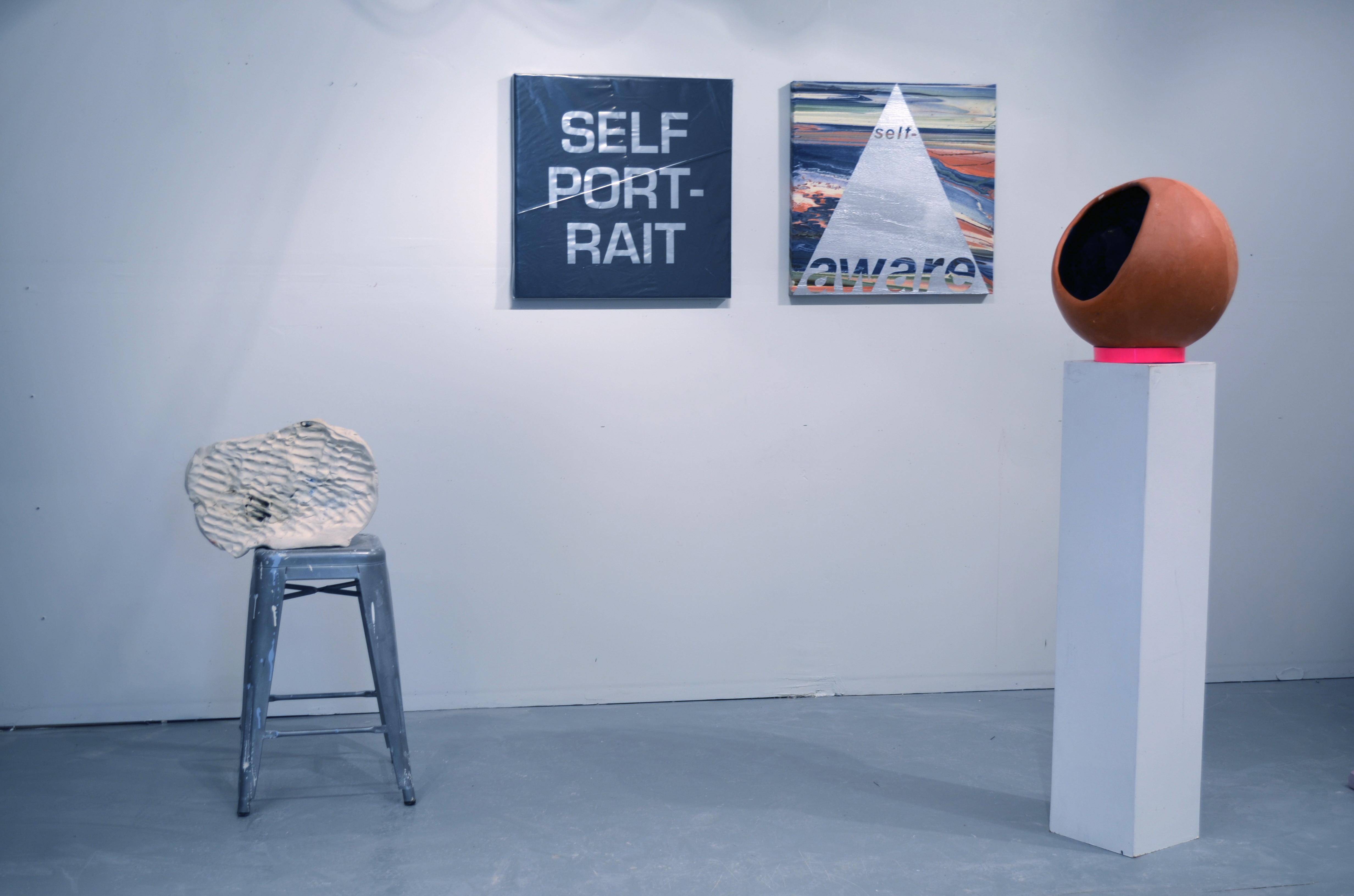 Self-Paradise Installation, 2013