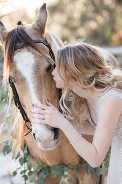 Horse & Rider Potraits
