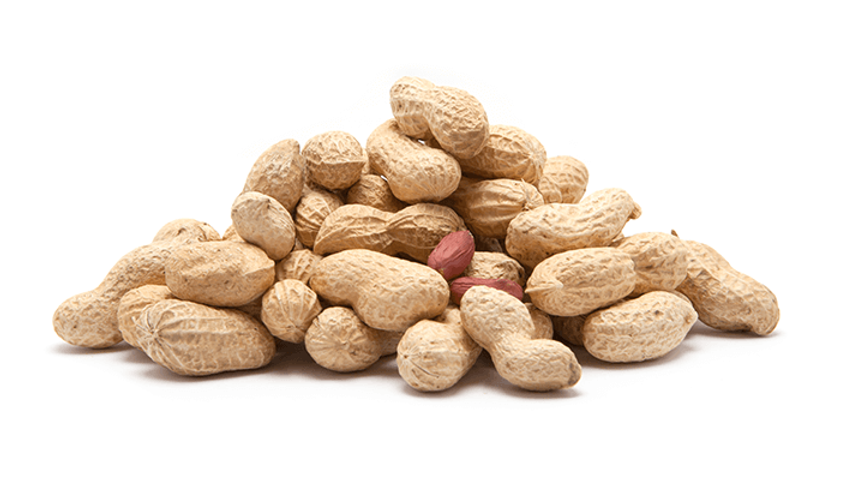 Whole Roasted PEANUTS in Shell