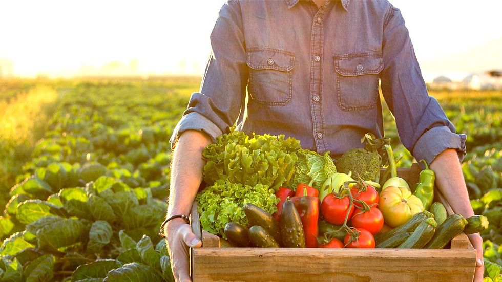 Fresh Produce Hamper