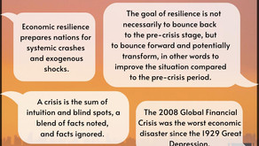 Exploring Economic Resilience and Crises: Can We 'Prepare' Our Economy?
