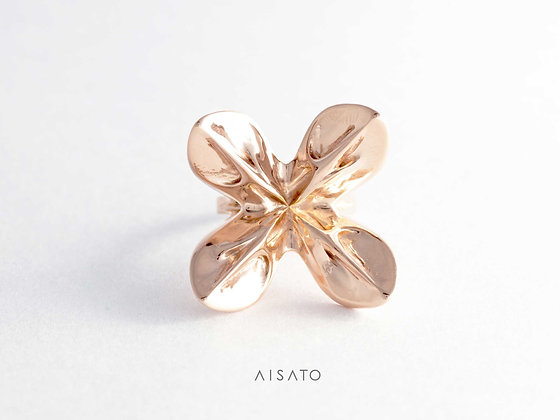 Helix Ring_  RoseGold/  YellowGold/  Silver