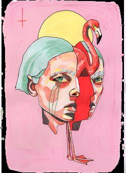 flamingo Illustration art der kreisende pfeil sandra albrecht
