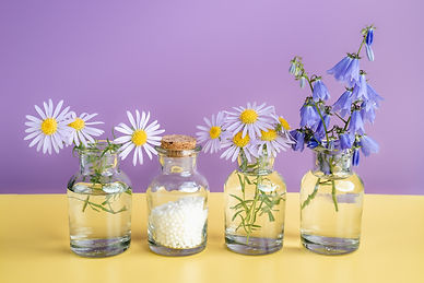 Alternative medicine herbs and homeopath
