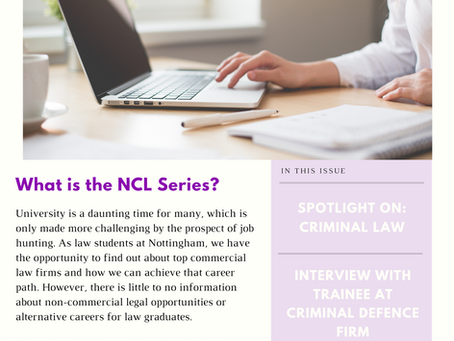 Non-Commercial Law Newsletter #1