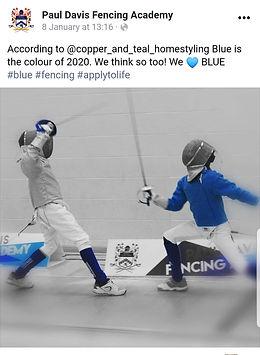 fencing media.jpg