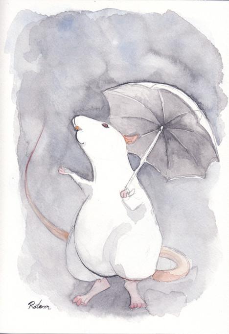 rat-6-rain.jpg