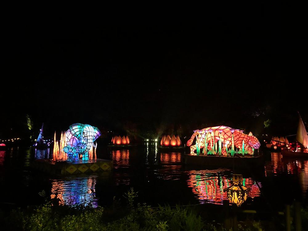 Disney-blogger-Disney-After-Hours-Animal-Kingdom-Rivers-of-Light