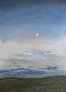 Crescent Moon Rising.jpg