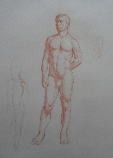 figure structure study, Colin