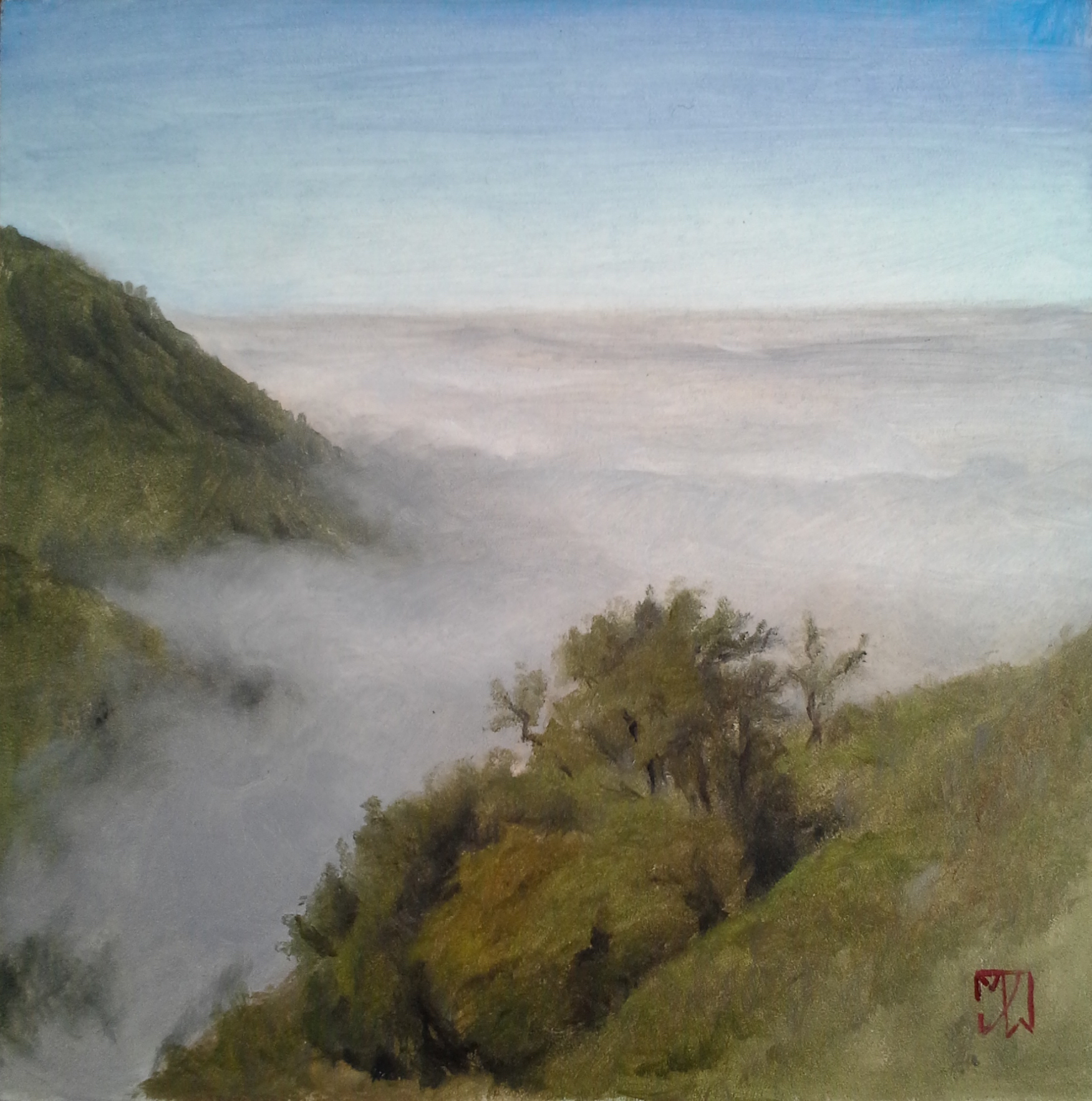 Above the Fog on Nacimiento Road