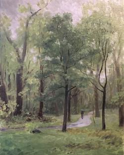 Rain at Whetstone Park