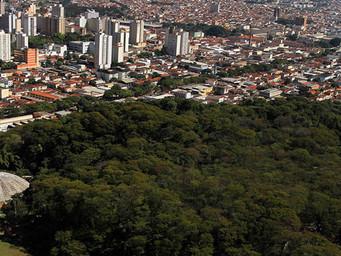 Ribeirão Preto tem 4 serviços com Alto Grau de Satisfação