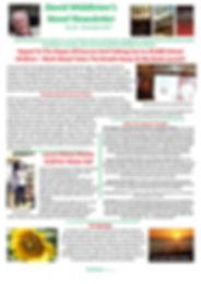 Novel Newsletter 10