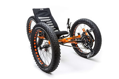 ICE Trike Models