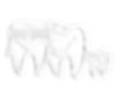 "Логотип клиники ""Улыбка №1"""