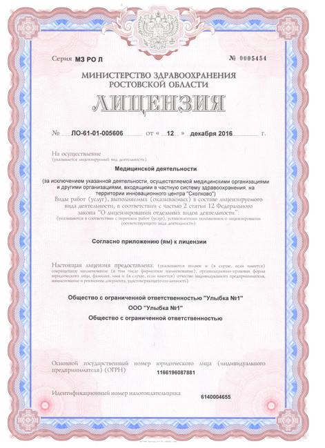 Лицензия (стр 1)