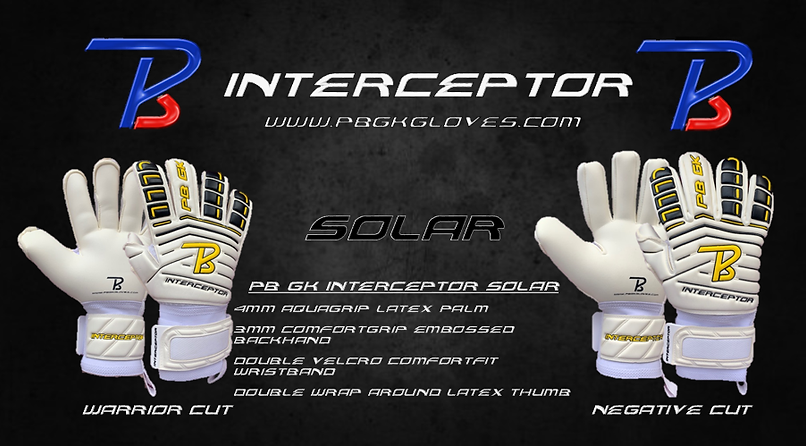 Interceptor Solar Homepage.png