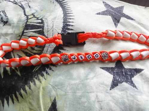 Halsband für Hunde