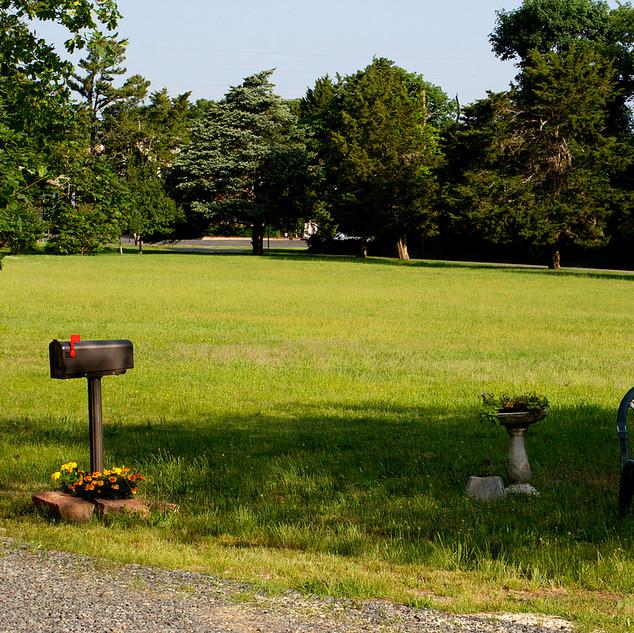 Great Lawn at Murray Grove.jpg