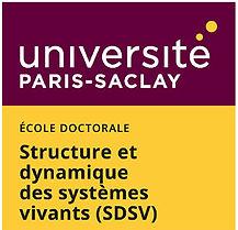 ED_SDSV_Logo.jpg