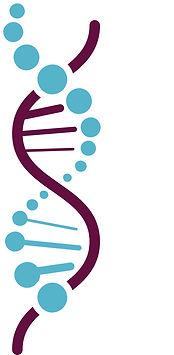 Logo_GenE2_V4_sans texte.jpg