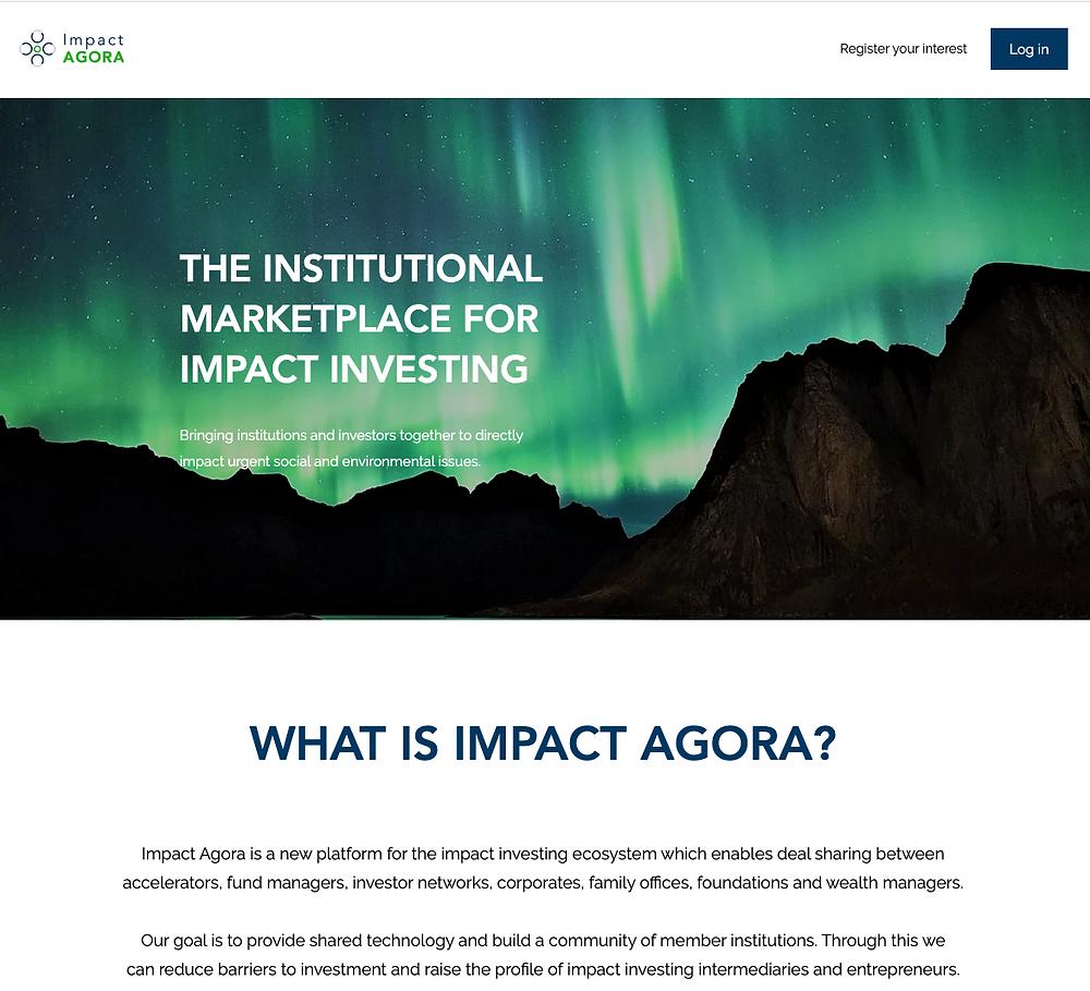 Screenshot of the Impact Agora homepage