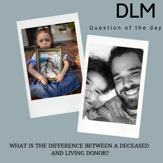 DLM: April 3 - Question of the Day