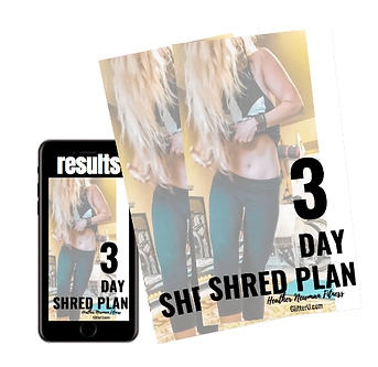 3dayshredcover.png