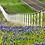 Thumbnail: Texas Two Step