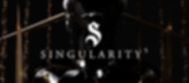 Singularity 5 logo by Monochrome Paris