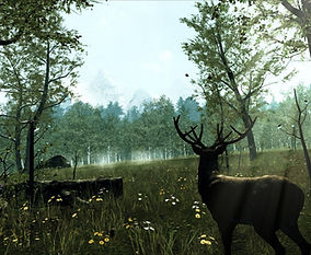 Nature Treks VR by John Carline for the Oculus Quest 2 and Oculus Quest platforms