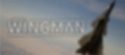 Project Wingman by Sector D2  logo