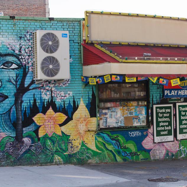 Protector of the Hood - painted mural on bainbridge Avenue